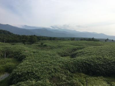 北海道横断の旅~摩周湖&知床五湖~
