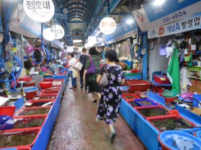 韓国 「行った所・見た所」 浦項(ポパン)竹島市場(ジュッド市場)内散策