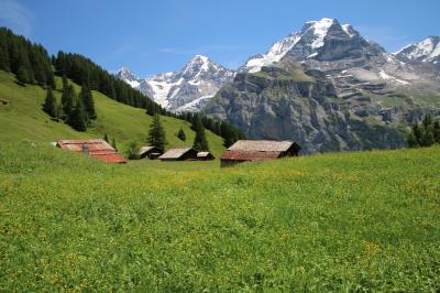 スイス個人旅行⑧  0705  ミューレン2(アルメントフーベル)