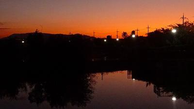 早朝散歩 久しぶりの鴻池第一公園 その1。