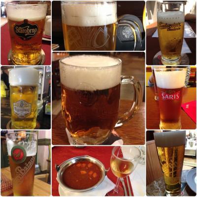 チェコ中心にビール三昧の旅(ピルスナー・ウルケル醸造所見学も)~ハンガリーではワインを