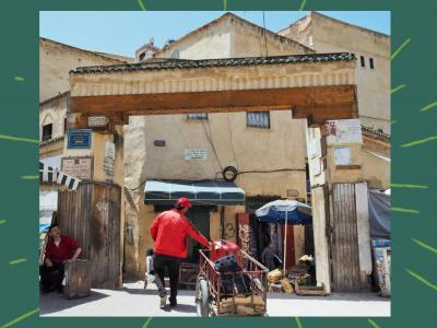 今日は何色?初ムスリムの国モロッコへ・・・おそるおそる駆け抜けた6日間!⑥☆シャウエンからフェズへ☆車窓の風景とリヤドまでの迷路('Д')☆