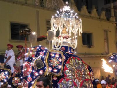 電飾衣装を着けた象たちが音楽隊やダンサーと古都キャンディの夜を熱くする エサラ ペラヘラ祭