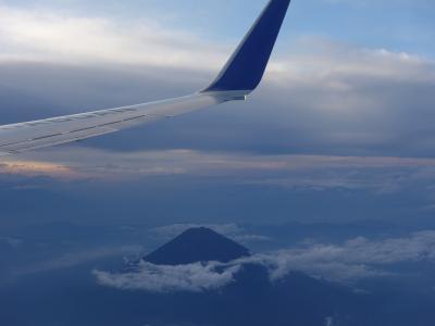 ボーイング737-800に乗りました。NRT-NGO NH493。17:05発。富士山がよく見えました。