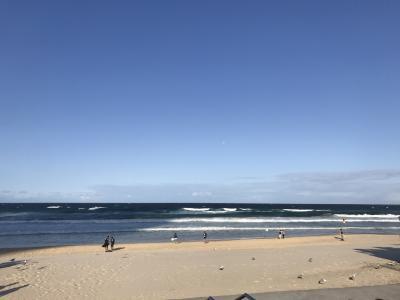 子連れ(6歳)でGo~ゴールドコーストのあのビーチ