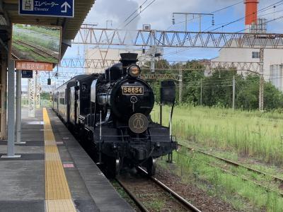 3連休で鹿児島離島巡りの旅が台風で予定変更!鉄っちゃいました♪(2)蒸気機関車に乗って2つ目の日本三大車窓見れました編