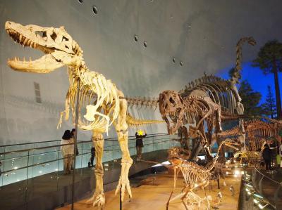 夏の疲れを癒しに行こう  ☆恐竜博物館へ☆
