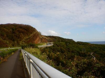 海も山も!!初上陸伊豆大島の旅