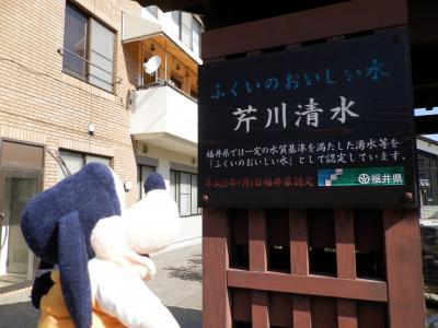 グーちゃん、福井へ行く!(パンツを上げて、天空の城(大野城)に行ってみよ~!編)