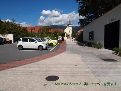 久しぶりの甲州路(甲府・石和温泉・御殿場)