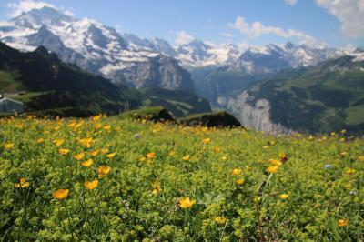 スイス個人旅行⑦  0704  グリンデルワルド2(メンリッヒェン)