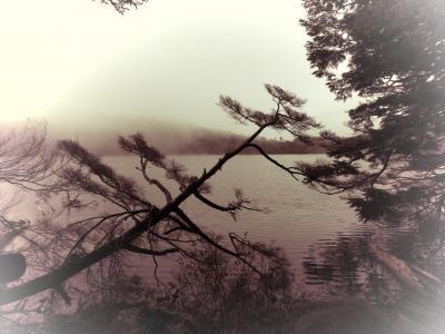 長野県の自然を急ぎで眺める旅