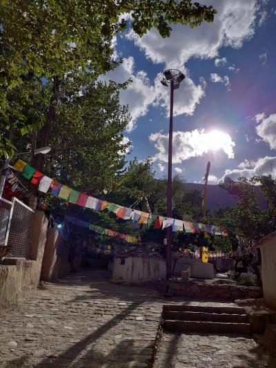 インド・ラダック~天空曼荼羅の旅②アルチ~杏の里