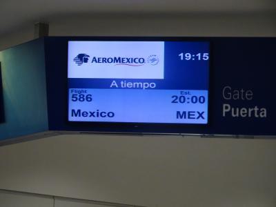 メキシコからの帰国