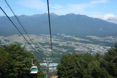 """信州「入笠山」湿原""""エゾリンドウ""""の群落"""