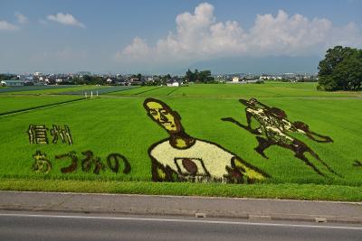 今年も夏の旅行は信州へ【3日目】-田んぼアート&碌山美術館-