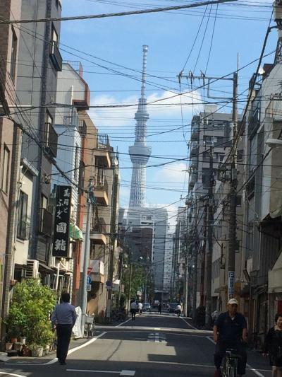 銀座に泊まってザ東京観光
