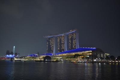 【ワンワールドで行くラウンジの鬼!東南アジア周遊旅行】(7-2)おまけのシンガポール~光のショー観光
