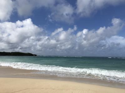 JALで行く沖縄の旅  ~台風18号接近