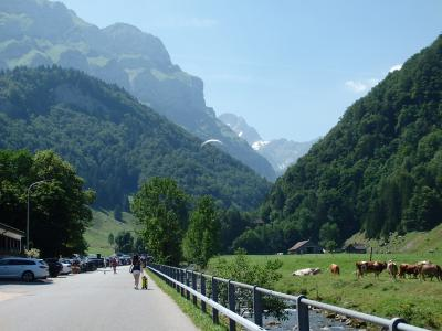 2019夏のスイス旅【53】ゼーアルプゼーからヴァッサーラウエンへ