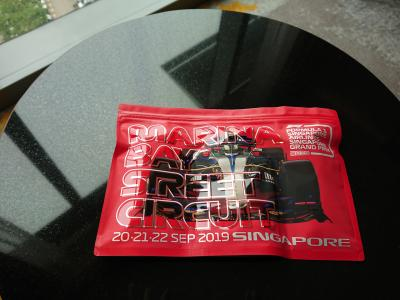 Day1 移動日 羽田→シンガポール ソフィテルシティセンター  ?