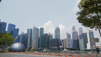 SFC修行旅 シンガポール その1