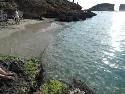 Honymoon ウィーン&マルタ島 day4