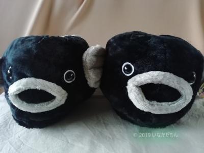 2019 爺とお嬢の函館旅 雨の函館