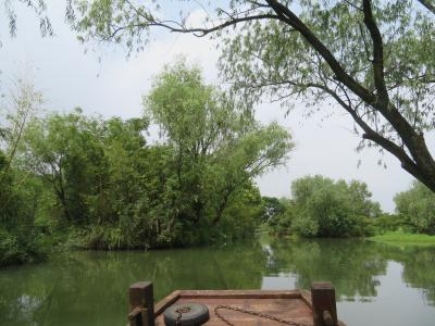 要注意!残念ながらこの全長4mの木造手こぎ遊覧船にはトイレは設置されていない西渓国家湿地公園2019年9月中国 杭州7泊8日(個人旅行)19