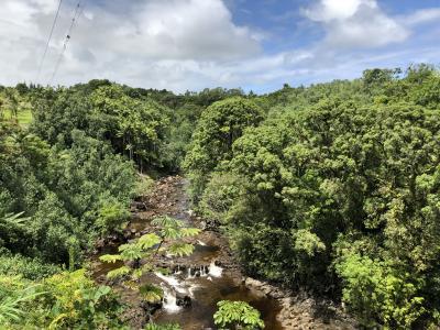 2019年9月 大人4人の詰め込みハワイ島旅 ③ZIPLINE