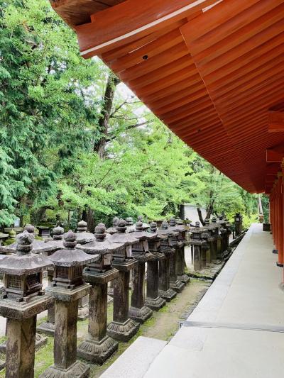 奈良ならでは!美味しくて魅力的になった映える古都