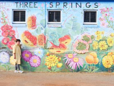 ワイルドフラワー咲く西オーストラリア9日間 その2(コールシーム自然保護区、エバーラスティング街道)