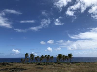 2019年9月 大人4人の詰め込みハワイ島 ⑤チェーンオブクレーターズロード