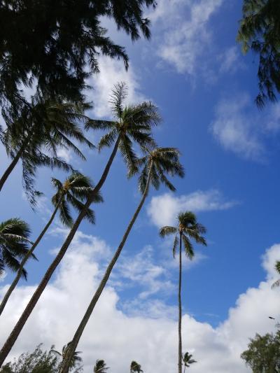 4泊6日のJALパックハワイ(その1)