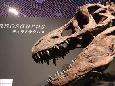 カムイサウルスに逢いに国立科学博物館に行ってみた!