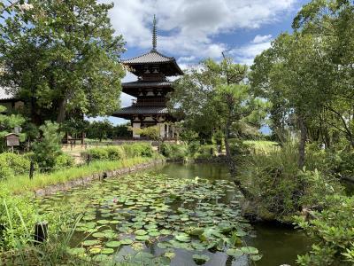 どこへ行っても麺が主食♪ 京都・奈良の旅 2日目《斑鳩の里と朝から天津丼編》
