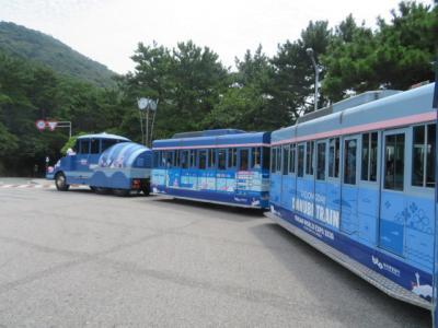 韓国 「行った所・見た所」 釜山の太宗台から南浦洞の国際市場に