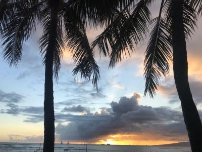 Aloha Hawaii 4泊6日①