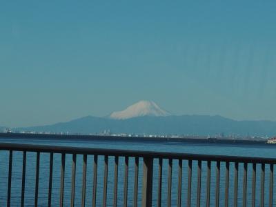 久々のコストコ、富士見大勝軒の昼