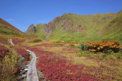 紅葉の秋田駒ヶ岳~乳頭山 電車・バス利用登山