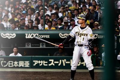 2019年 平成最後・令和初の野球観戦まとめ(兵庫、大阪、広島)