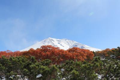 紅葉と初冠雪の旭岳