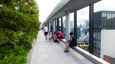 JAL エアバスA350-900搭乗目的 東京1泊2日の旅【銀座並木通り、中央通り、GINZA SIX(屋上庭園)など散策編】