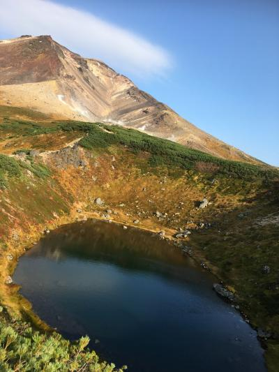 北海道旅行 地獄谷、旭岳、旭山動物園