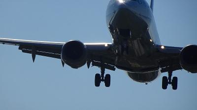 千里川河川敷へ着陸する飛行機を見に行った・・・伊丹空港の保安検査場のトラブルの朝。