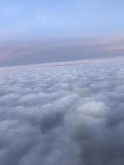 【観光一切なし!】フィリピン航空ビジネスクラスで行くセブ島2泊3日(現地滞在約48時間)②
