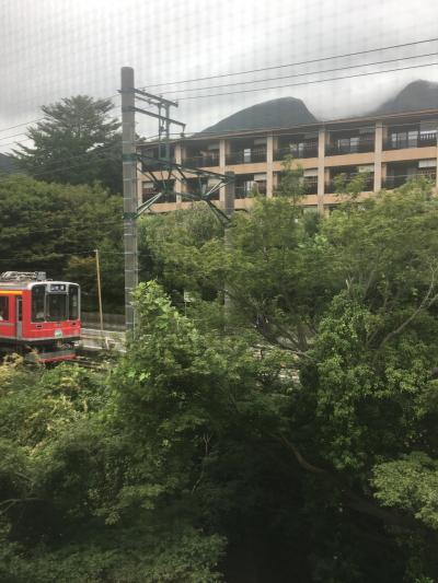 子供連れ(1歳、5歳)思い付きの箱根旅