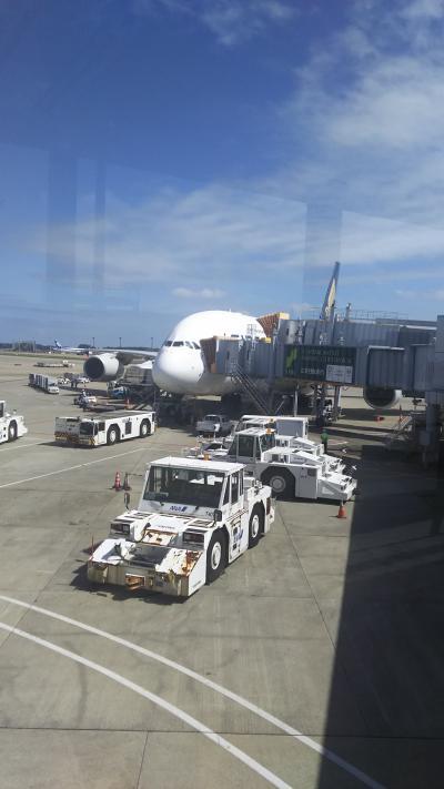 シンガポール旅行 SQ637便(NRT→SIN A380-800ビジネスクラス搭乗記)&成田空港飛行機ウオッチング