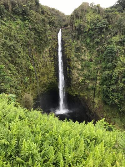 2019 春旅 ハワイ島 オプショナルツアーに参加する アカカ滝・マウナケア星空・キラウェア