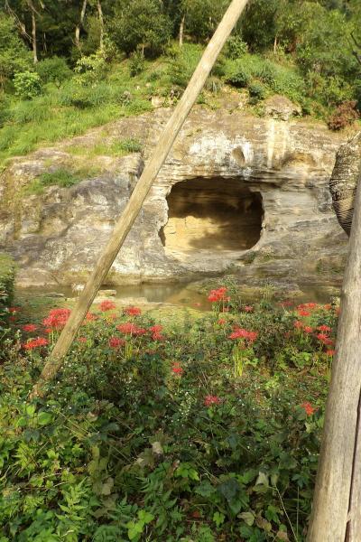 瑞泉寺庭園と徧界一覧亭
